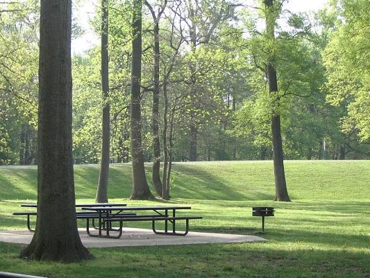 Bänke und Bäume im Park