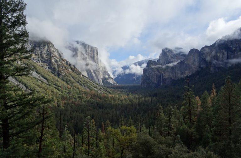 Berge und Wald