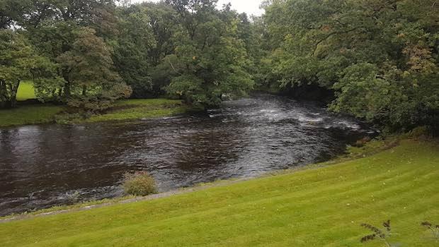 Fluss mit Wiese und Biegung
