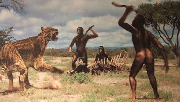 Frühmenschen jagen mit Speeren Tiger