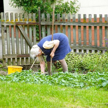 alte Frau gebückt im Garten