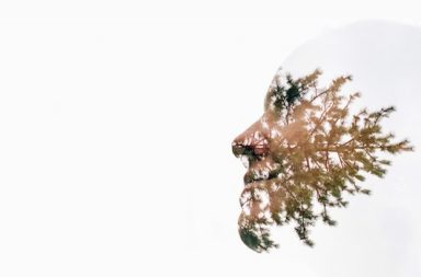 weißer Kopf und Nadelbaum als Schattierung auf Gesicht
