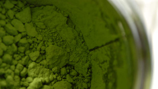 Matcha gruenes Pulver