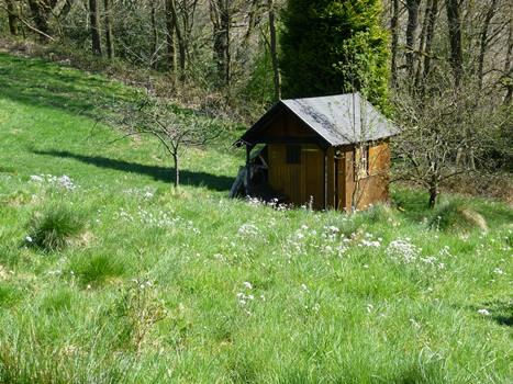 Holzhütte in Wiese