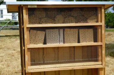 Insektenwohnungen