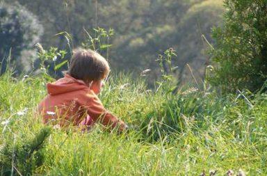 Junge sitzt im Gras orange Jacke an