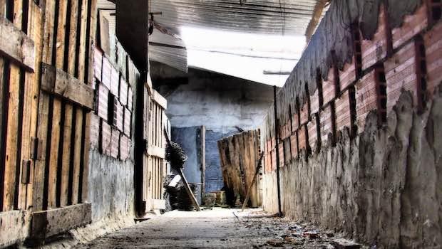 Kellerverschlag Unordnung Leer