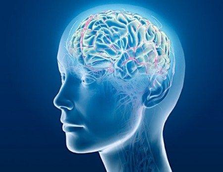 Kopfdarstellung mit Gehirn, blau