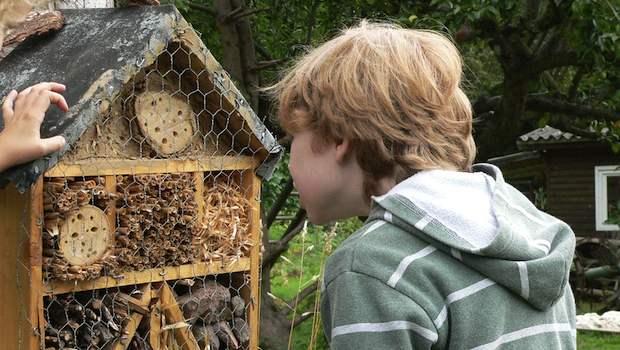 Kind vor Bienenstock