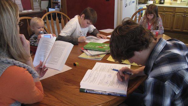 Lernen ohne Schule am Küchentisch