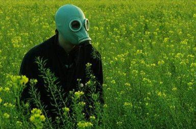 Mann mit Gasmaske im Rapsfeld