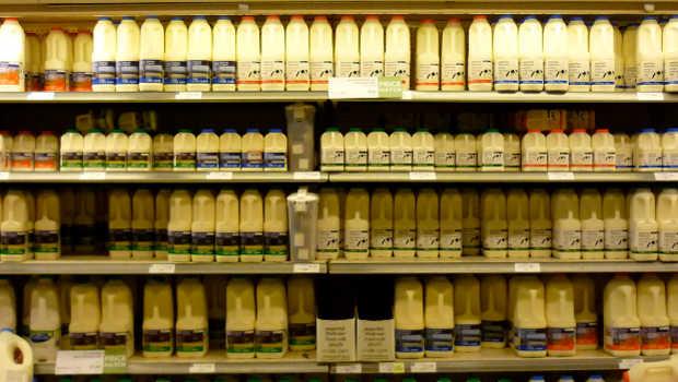 Milch Kühlregal