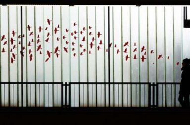 Schattenbild Mädchen Gedanken als Vogelschar