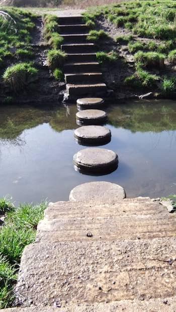 einzelne Steine über Wasser führend
