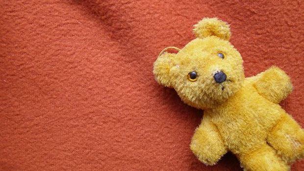 Teddybär auf rotem Stoff