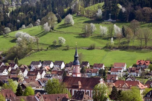 Waldkirch Frühling Luftaufnahme