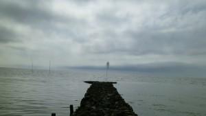Steinweg, Meer, wolken, Baum