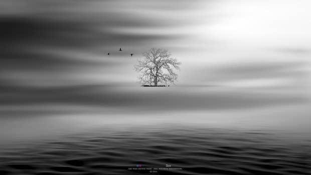 weite graue Welt Wellen Himmel Baum in der Ferne