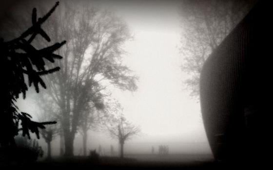 Winterlandschaft schwarzweiß
