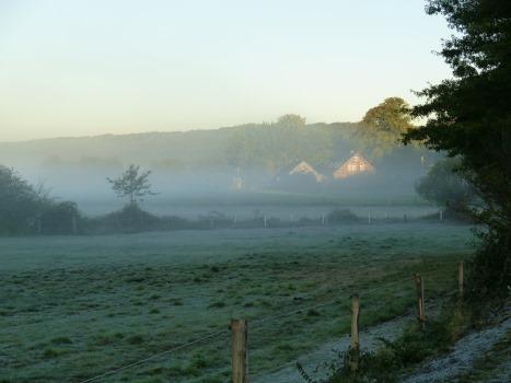 zauberhafter Nebelmorgen